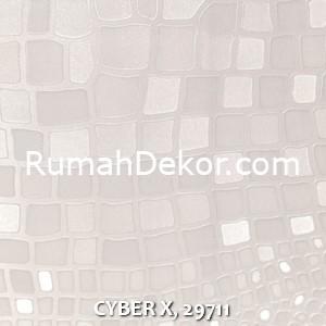CYBER X, 29711