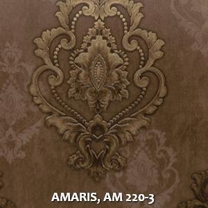 AMARIS, AM 220-3