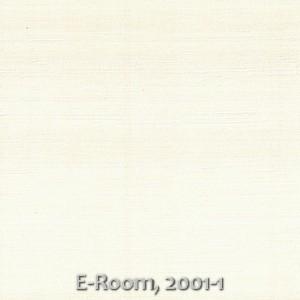E-Room, 2001-1